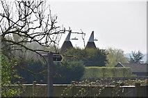 TQ6143 : Castle Hill Oast by N Chadwick