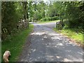 TQ4630 : Gateway Entrance to the Old Lodge by John P Reeves