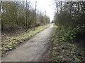 NZ3949 : Seaton 1st railway station (site), County Durham by Nigel Thompson