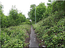 SE2433 : Path from Wood Lane to Post Hill Court by Stephen Craven