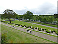 NJ9304 : Duthie Park:miniature topiary from above by Stephen Craven