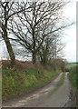 SS5120 : Lane from Moortown by Derek Harper