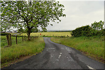 H5572 : Roeglen Road, Bracky by Kenneth  Allen