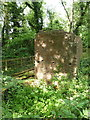SJ7213 : Remains of pumping engine structure by Richard Law