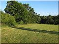 TL5601 : Grass field near Great Myles House, Kelvedon Hatch by Roger Jones