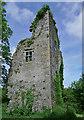 R0133 : Castles of Munster: Ballinruddery, Kerry (1) by Garry Dickinson