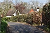 TQ5642 : Stockland Green Rd by N Chadwick