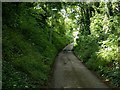 SK6646 : Red Lane, Lowdham by Alan Murray-Rust