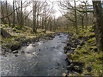 SH6229 : Looking downstream from Pont Cwm-yr-afon by David Medcalf