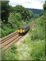 ST1882 : Class 150 near Llanishen by Gareth James