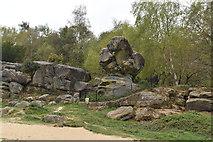 TQ5639 : Toad Rock by N Chadwick
