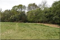 TQ5639 : Rusthall Common by N Chadwick
