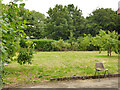 SE2632 : Western Flatts Cliff Park: orchard by Stephen Craven