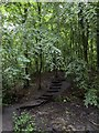 SP5606 : Footpath in the C.S. Lewis Nature Reserve by Steve Daniels