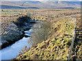 NT0722 : River Tweed at Hawkshaw by David Dixon