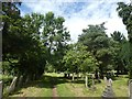 SX9393 : Trees and footpath, Exeter Higher Cemetery by David Smith