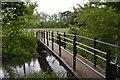 SU7874 : Giddy Bridge, a footbridge over the 'Old' River Loddon by Simon Mortimer