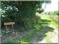 ST3732 : Dawe's Road (1800) by Neil Owen