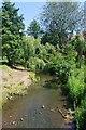 TL4821 : River Stort Near Waytemore Castle by Glyn Baker