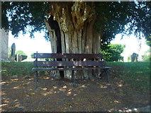 SO5928 : Bench at St. Mary's Church (Foy) by Fabian Musto