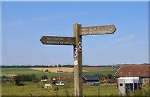 NO3002 : Braes Loan Trail signpost by Bill Kasman