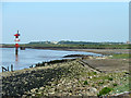 TQ6974 : Foreshore in front of Shornmead Fort by Robin Webster