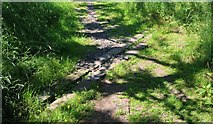 NO3101 : Drainage channel by Bill Kasman
