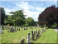 SX9493 : Cedar and other trees in Exeter Higher Cemetery by David Smith