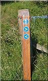 NO3101 : Fife Pilgrims Way signpost by Bill Kasman