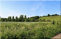 NO3002 : Brunton Barns by Bill Kasman