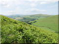 NT9032 : Bracken-rich slopes of Coldside Hill by James T M Towill