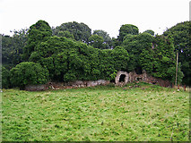 N8276 : Castles of Leinster: Clongill, Meath (1) by Garry Dickinson