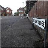 SZ0995 : Moordown: Hillcrest Close by Chris Downer