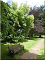 SX9393 : Bench and trees, Exeter Higher Cemetery by David Smith