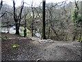 NZ1456 : Looking down to Pontburn bridge by Robert Graham