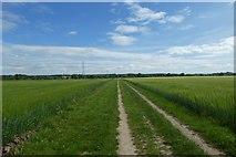 SE6757 : Bridleway towards Sand Hutton by DS Pugh