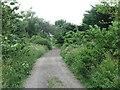 NZ2874 : Public Footpath Near Seghill by Geoff Holland