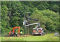 NT2640 : New electricity poles, Wirebridge by Jim Barton