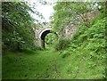 NZ0747 : Healeyfield Bridge by Adrian Taylor