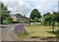 TL5156 : Fulbourn: Pierce Lane lavender by John Sutton