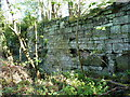 SJ7906 : House platform walling on the site of Tong Castle by Richard Law
