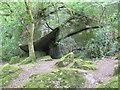SX7781 : The Donkey Cave, Lustleigh, Dartmoor by Sloop John B