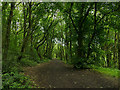 SE2426 : Old tramway route in Howden Clough, now Kirklees Way / LCW by Stephen Craven