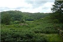 NY3404 : Wall near Neaum Crag by DS Pugh