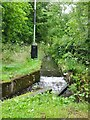 SO8595 : Dimmingsdale Overflow by Gordon Griffiths