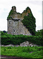 S1126 : Castles of Munster: Moorstown, Tipperary (2) by Garry Dickinson