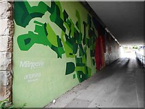 NS5574 : New artwork at Gavin's Mill Underpass (6) by Richard Sutcliffe