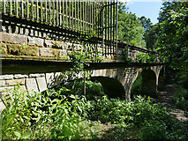 SE2839 : North face of Seven Arches aqueduct by Stephen Craven