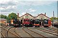 SU5290 : Didcot Railway Centre - GWR locomotives by Chris Allen