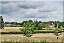 TL9558 : Gedding Hall from St. Mary's Church by Michael Garlick
